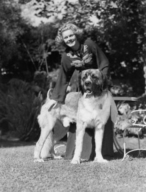 Harlow in 1936 with her dog