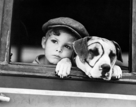 "Dickie Moore with Pete the Pup in ""Our Gang"" in 1930. Moore said he didn't enjoy the Hal Roach series because he didn't feel he fit in"